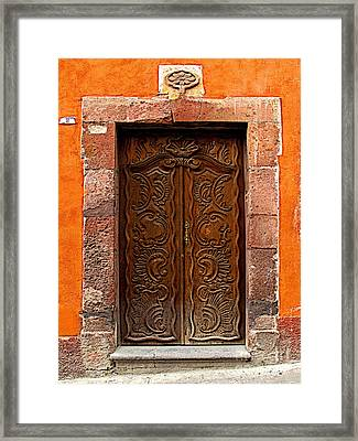 Door Of Life Framed Print