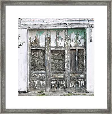 Doors Framed Print