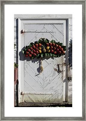 Doors Of Williamsburg 96 Framed Print by Teresa Mucha