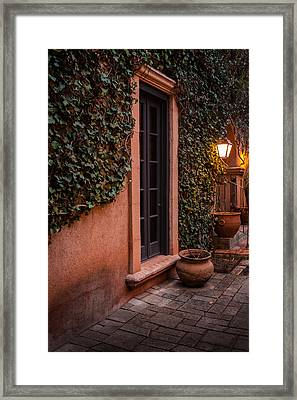 Doorway Through The Vines Framed Print