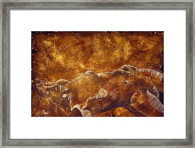 Dorothy Iv Framed Print by Richard Hoedl