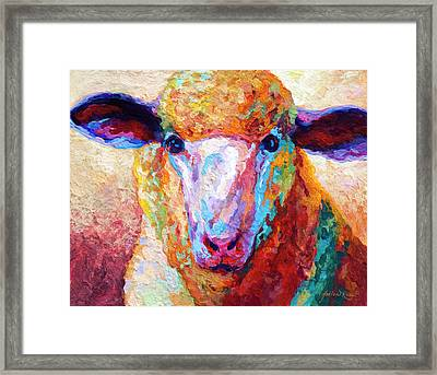 Dorset Ewe Framed Print by Marion Rose