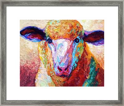 Dorset Ewe Framed Print