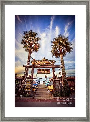 Dory Fishing Fleet Market Picture Newport Beach Framed Print