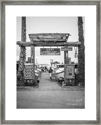 Dory Fishing Fleet Picture In Newport Beach California Framed Print by Paul Velgos