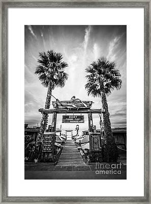 Dory Fleet Market Newport Beach Photo Framed Print