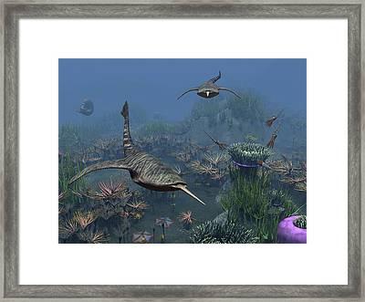 Doryaspis Swim Amongst A Bed Framed Print by Walter Myers