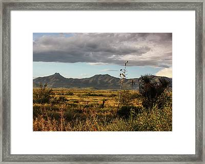 Dos Cabezas Grasslands At Dusk Framed Print
