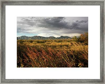 Dos Cabezas Grasslands Framed Print