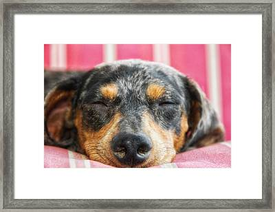 Dosing Framed Print by Camille Lopez