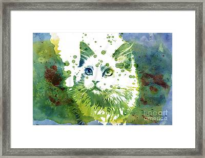 Dotted Cat Framed Print by Jutta Maria Pusl