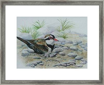 Dotterol Framed Print by Val Stokes