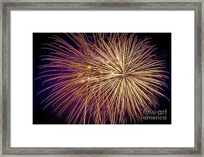 It Went Boom Framed Print by Lynn Sprowl