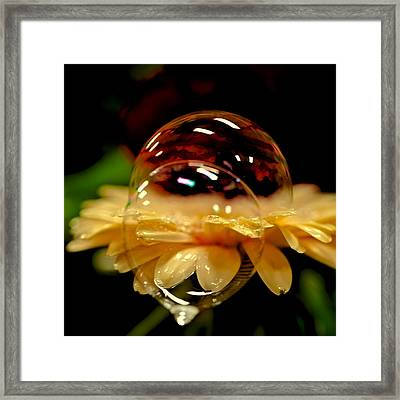 Double Bubble Flower Framed Print