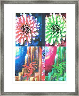 Double Color Visions Framed Print by Anne-Elizabeth Whiteway