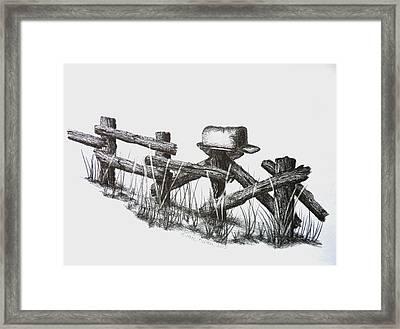 Double Duty Rail Fence Framed Print by Diane Palmer
