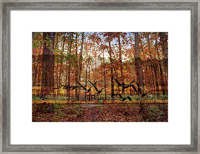 Double Exposure  Framed Print by Geraldine Scull