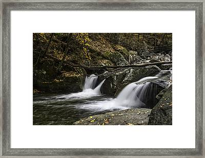 Double Flow Framed Print