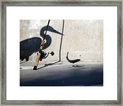 Double Jeapardy Framed Print