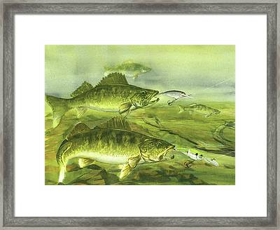 Double On The Rocks Framed Print by Bud Bullivant