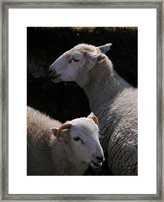 Framed Print featuring the photograph Double Portrait by Harry Robertson