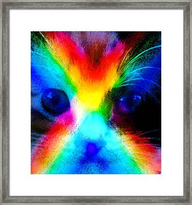 Framed Print featuring the painting Double Rainbow Cat by David Lee Thompson