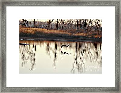 Double Reflection Framed Print by Yumi Johnson