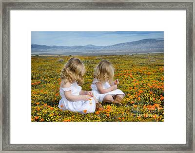 Double Take In A Poppy Field Framed Print