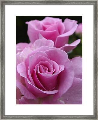 Double Take Framed Print by Juergen Roth