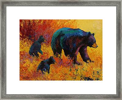 Double Trouble - Black Bear Family Framed Print by Marion Rose