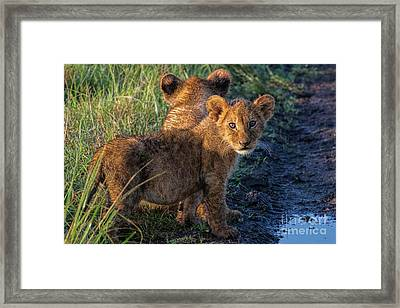 Framed Print featuring the photograph Double Trouble by Karen Lewis