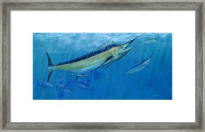 Double Up Marlins Framed Print by Kevin Brant
