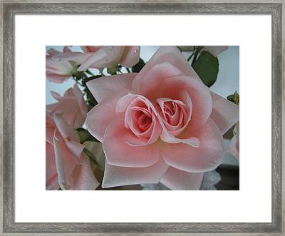 Double Vision Framed Print by Gregory Young