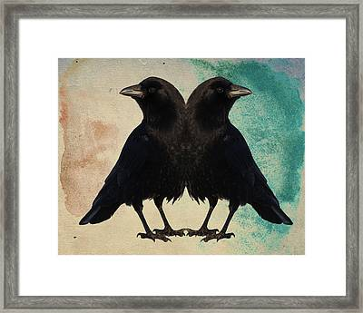 Twin Beaks Framed Print by Gothicrow Images