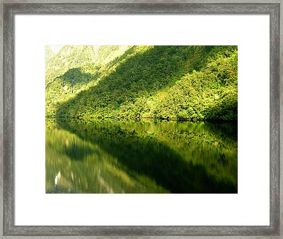 Doubtful Sound, New Zealand No. 4 Framed Print