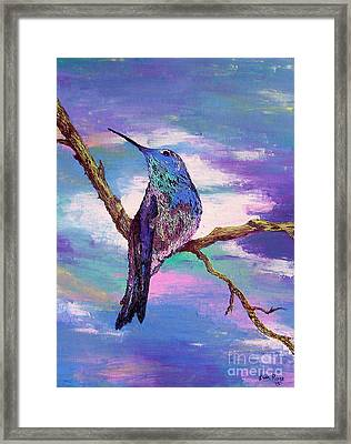 Dougs Hummingbird Framed Print