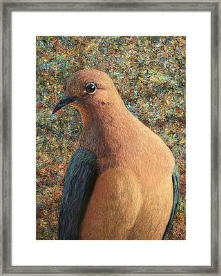 Dove Framed Print by James W Johnson