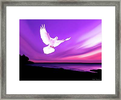 Dove Of My Dreams Framed Print