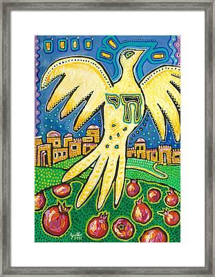 Dove Over Jerusalem Framed Print