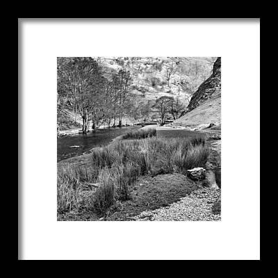 Naturelover Framed Prints