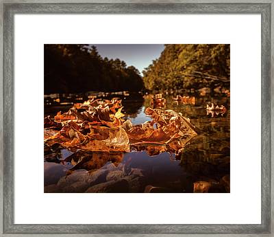 Down A Lazy River Framed Print