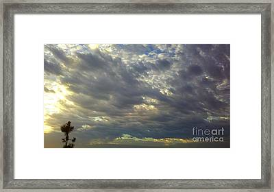 Down Blanket Framed Print by Tracy Evans