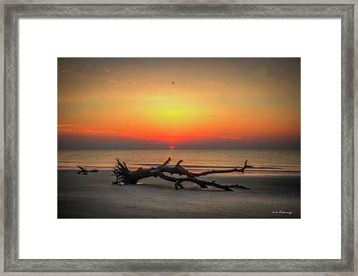 Down But Not Out Driftwood Beach Jekyll Island Georgia Art Framed Print