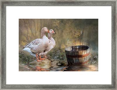 Framed Print featuring the photograph Down By The River by Robin-Lee Vieira