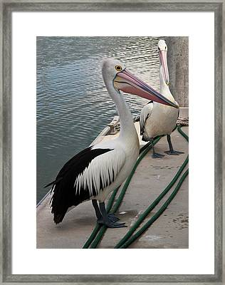 Framed Print featuring the photograph Down By The Docks by Odille Esmonde-Morgan