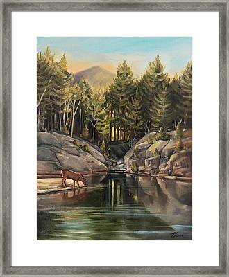 Down By The Pemigewasset River Framed Print
