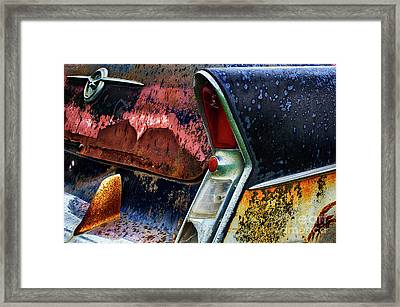 Down In The Dumps 10 Framed Print by Bob Christopher