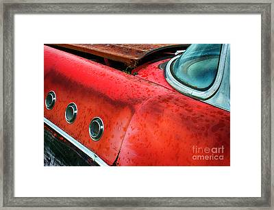 Down In The Dumps 12 Framed Print by Bob Christopher