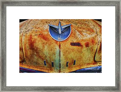 Down In The Dumps 14 Framed Print by Bob Christopher
