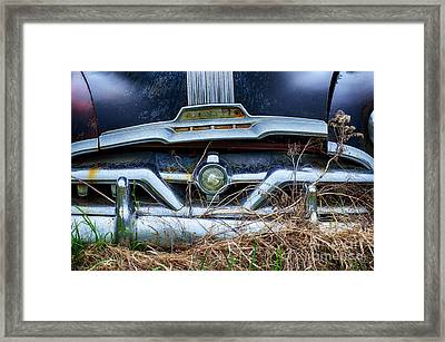 Down In The Dumps 18 Framed Print by Bob Christopher